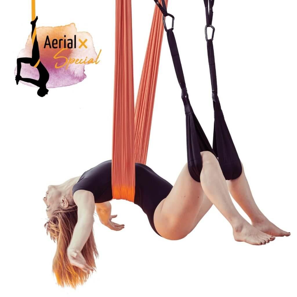 Aerial-Yogatuch-Aerial-Wellness-Schaukel-1024x1024