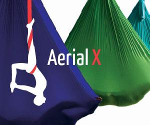 AerialX